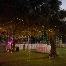 Sans Frontieres Partner Venues Event Di In Limassol For Wedding Corporate Events And Parties
