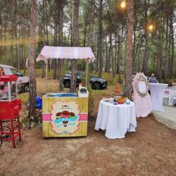 Rentals Of Ice Cream Cart Pop Corn Cart Chocolate Fountain For Your Special Events